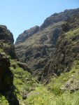 Barranco trail Tenerife