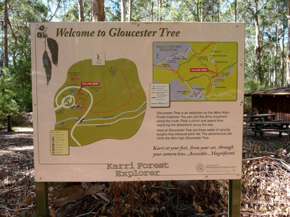 Gloucester tree sign