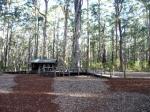 Diamond tree base